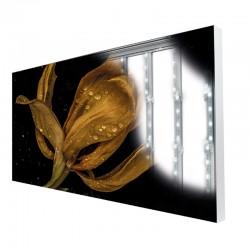 Cadre TecoFrame 120 LED